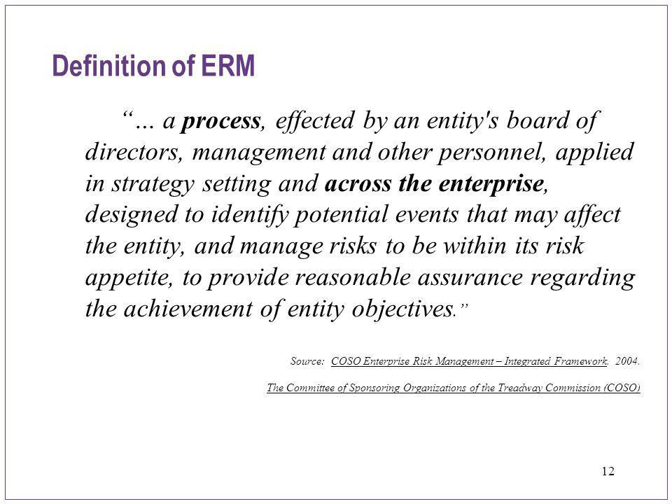 Definition of ERM