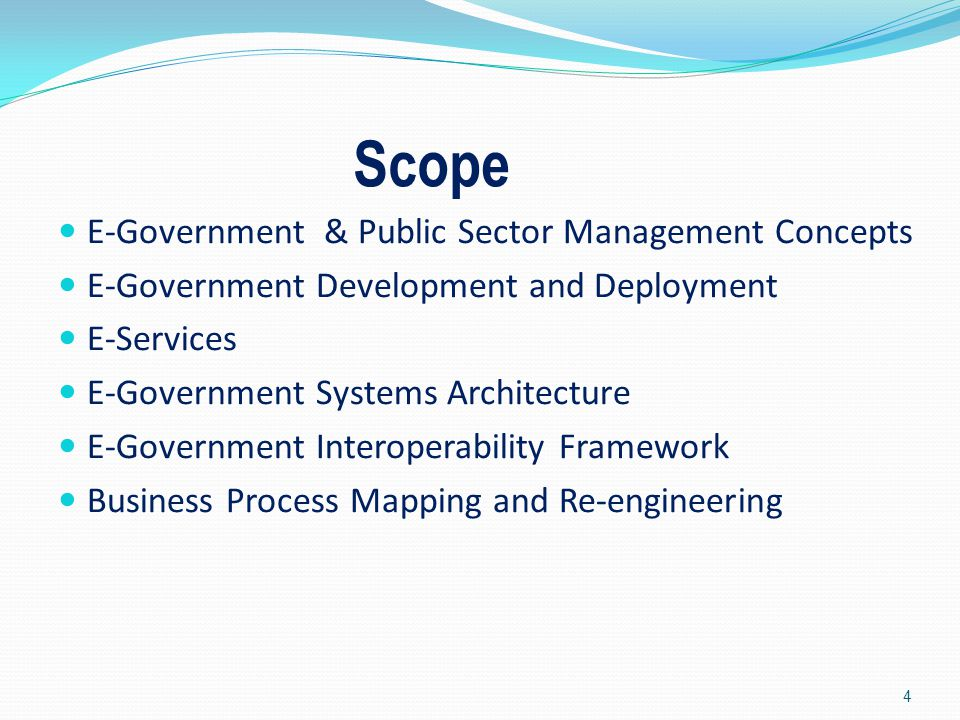 Scope E-Government & Public Sector Management Concepts