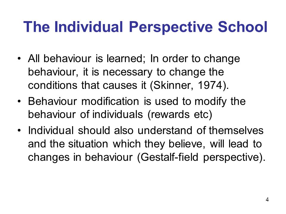 The Individual Perspective School