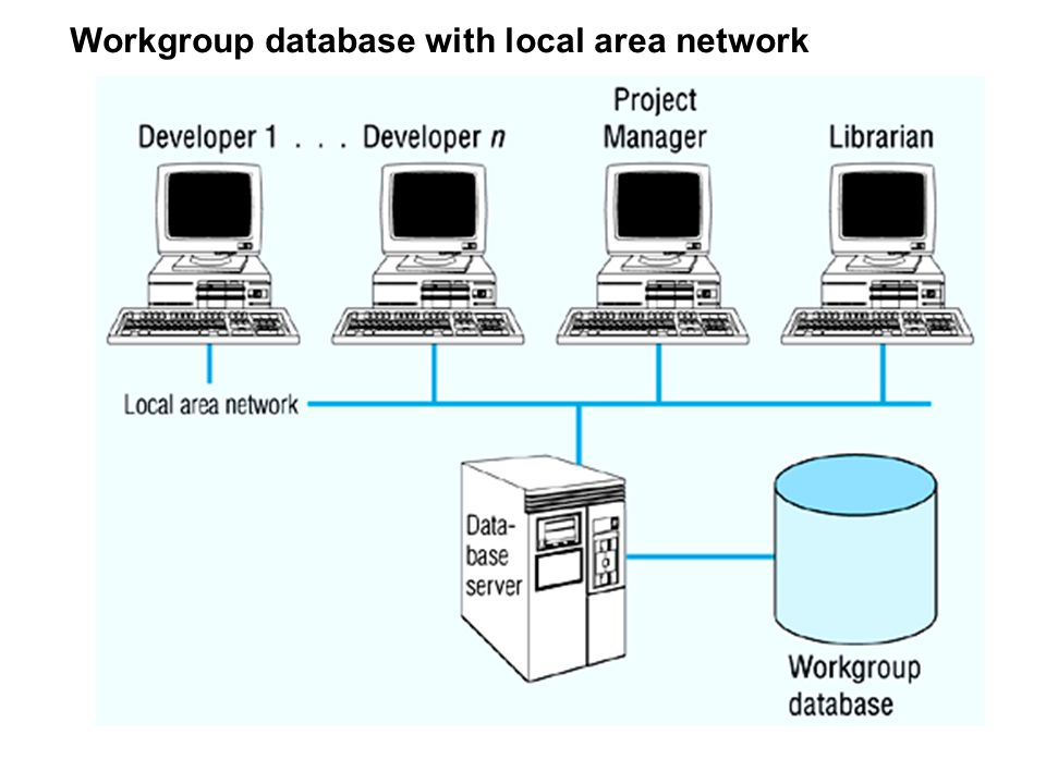 Workgroup database with local area network
