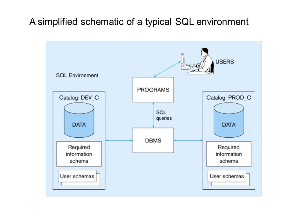 A simplified schematic of a typical SQL environment