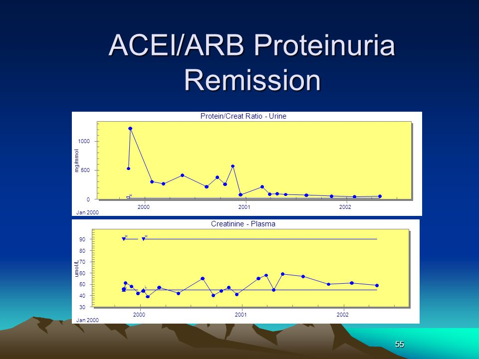ACEI/ARB Proteinuria Remission