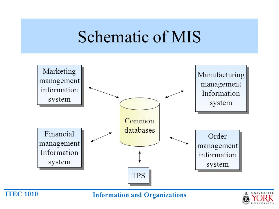 Schematic of MIS Marketing management Manufacturing management