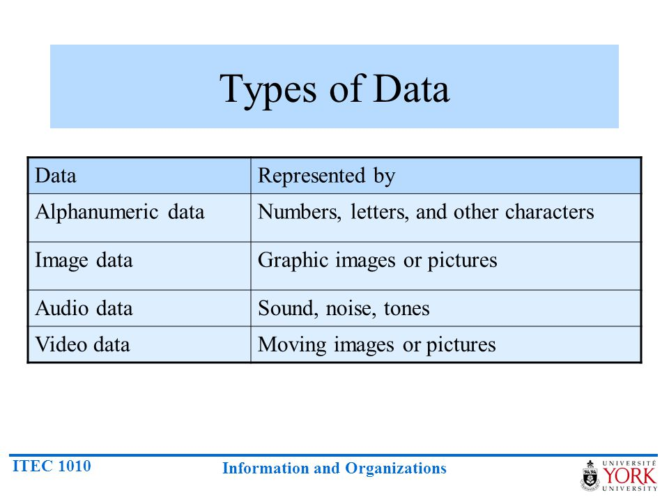 Types of Data Data Represented by Alphanumeric data