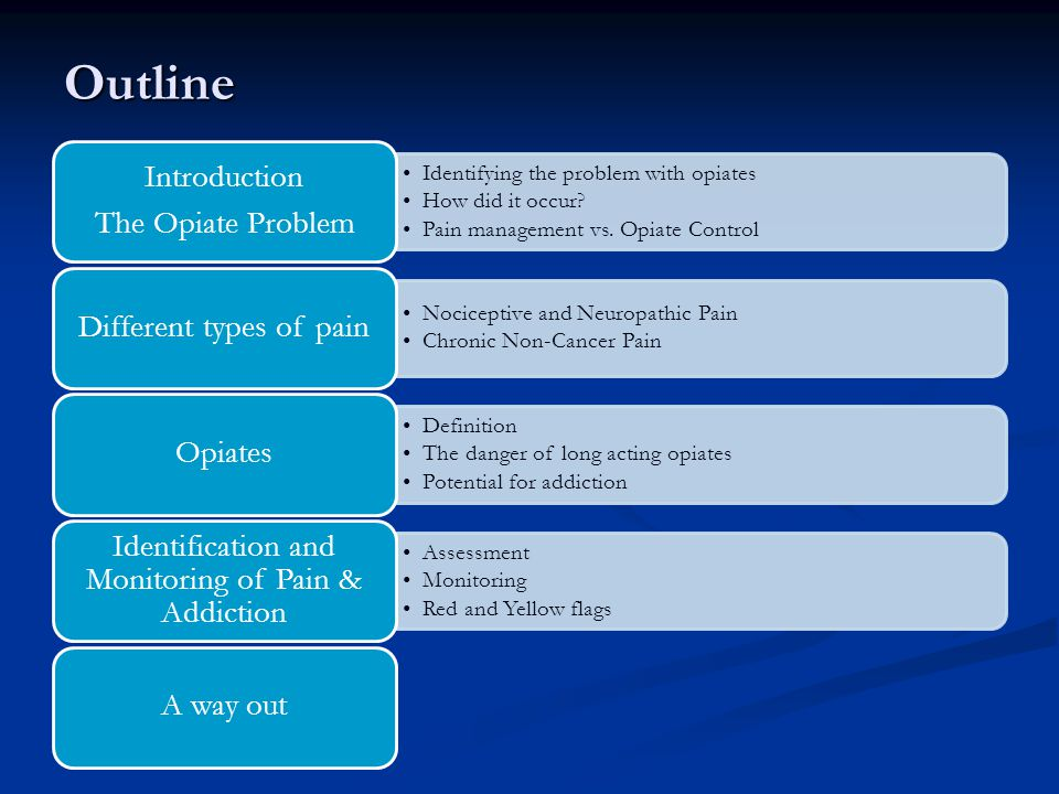 Outline The Opiate Problem Introduction