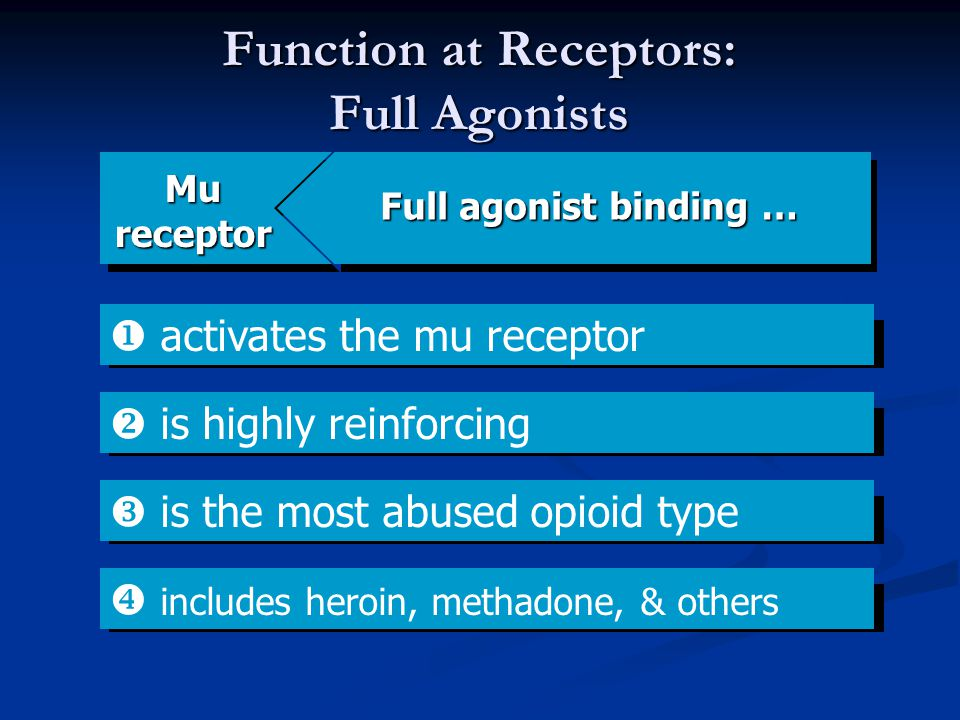 Function at Receptors: Full Agonists