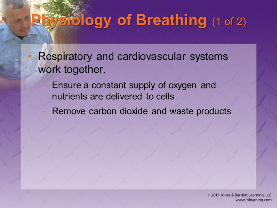 Physiology of Breathing (1 of 2)