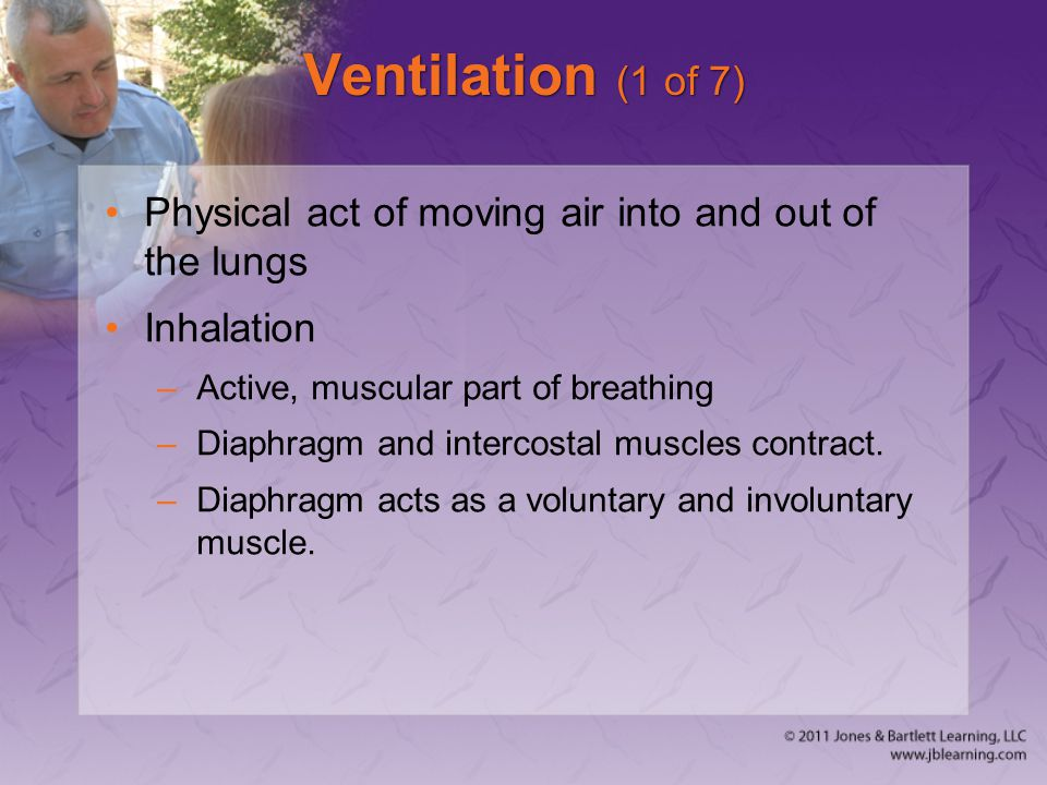 Ventilation (1 of 7) Physical act of moving air into and out of the lungs. Inhalation. Active, muscular part of breathing.