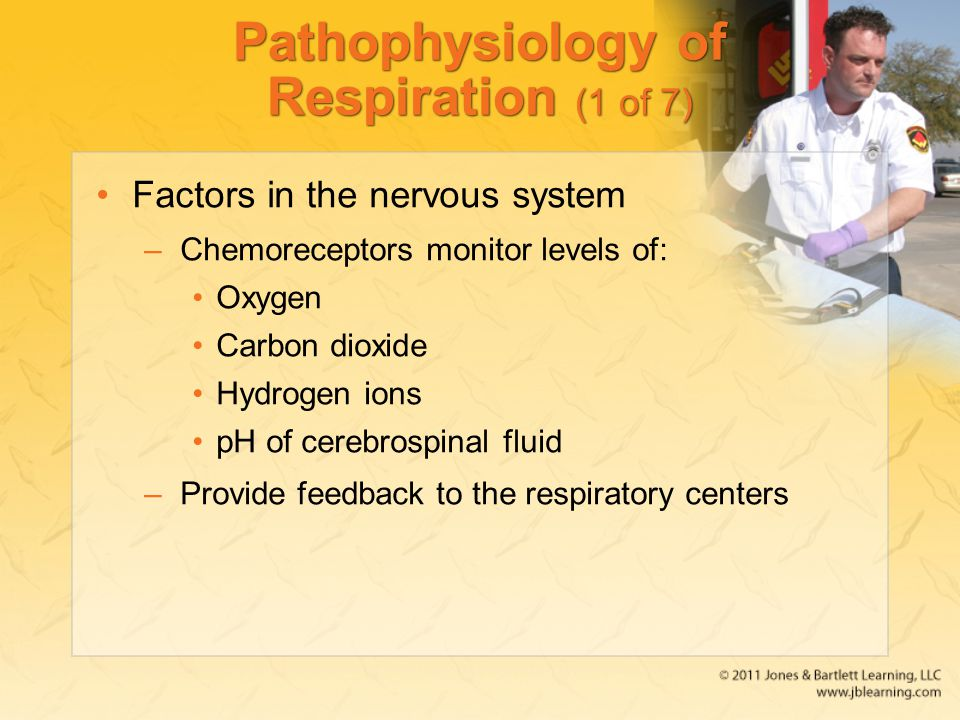 Pathophysiology of Respiration (1 of 7)