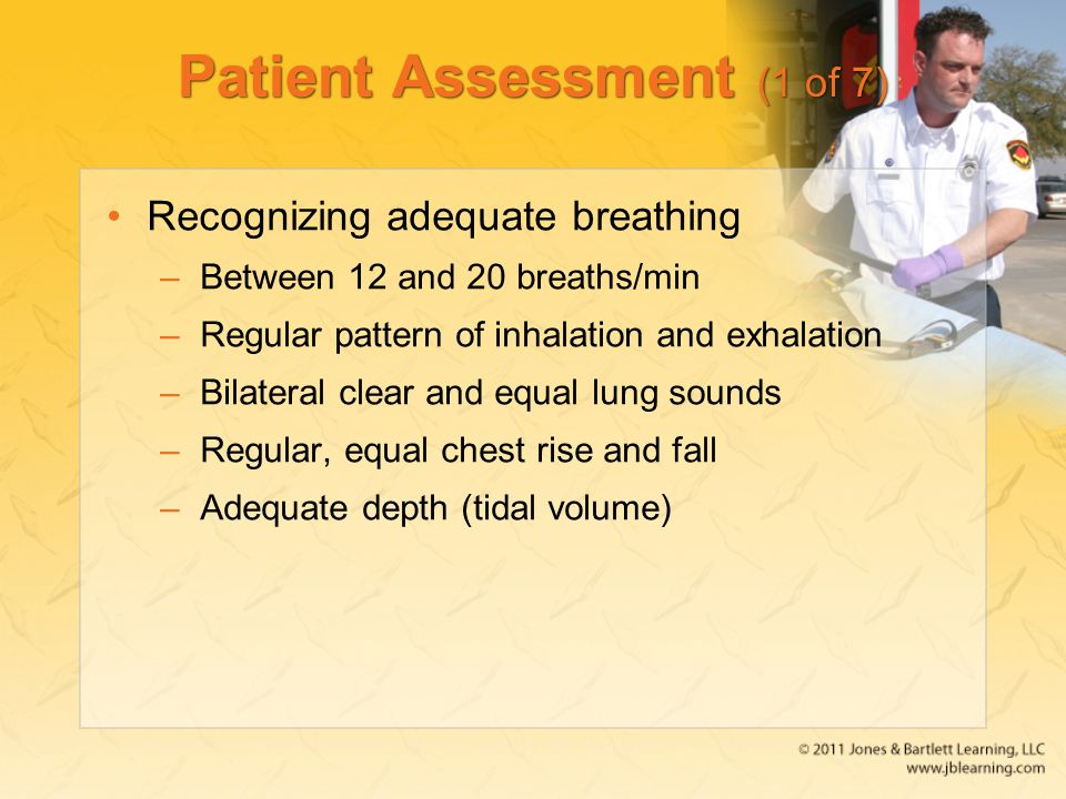 Patient Assessment (1 of 7)