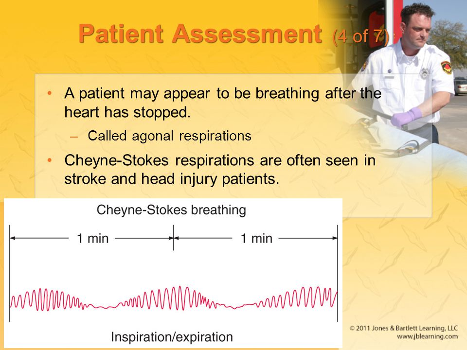 Patient Assessment (4 of 7)