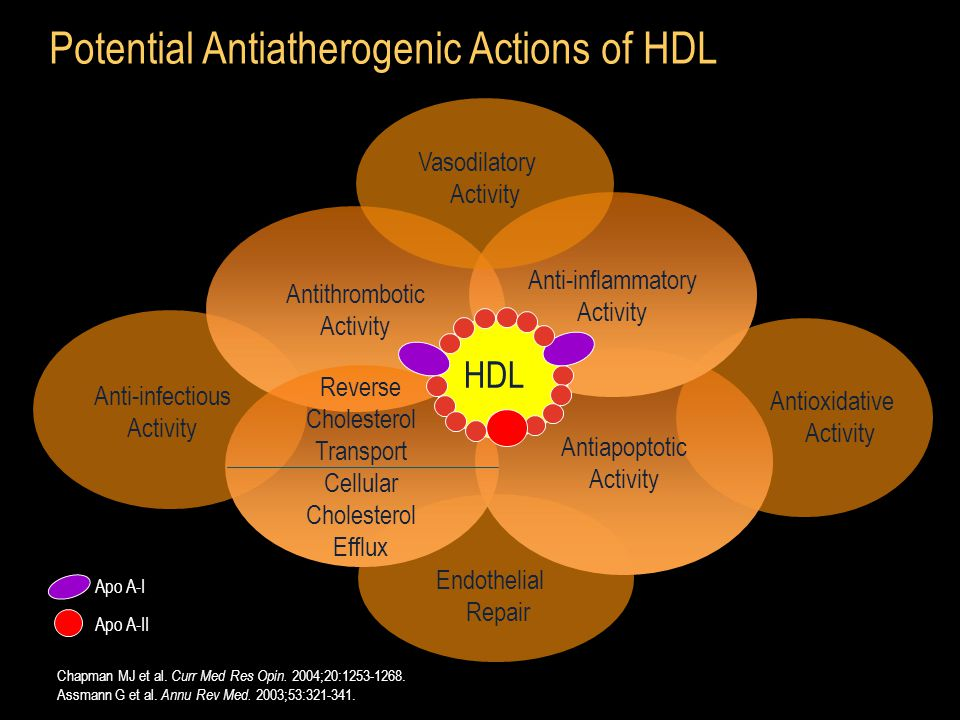 Potential Antiatherogenic Actions of HDL