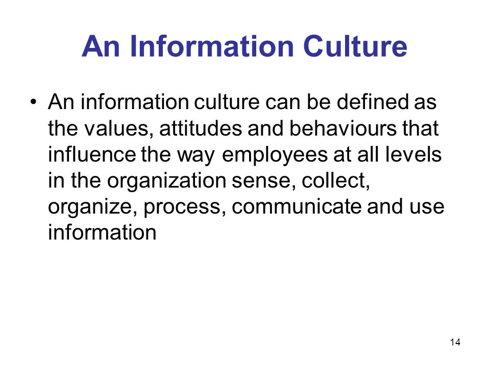 An Information Culture