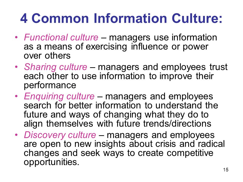 4 Common Information Culture: