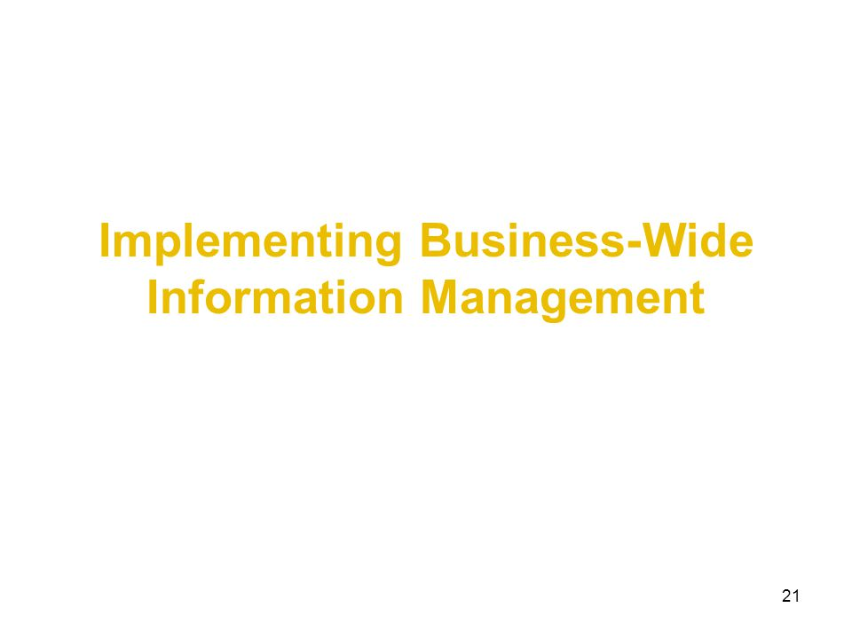Implementing Business-Wide Information Management