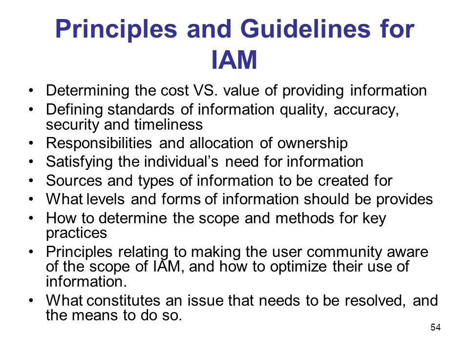 Principles and Guidelines for IAM