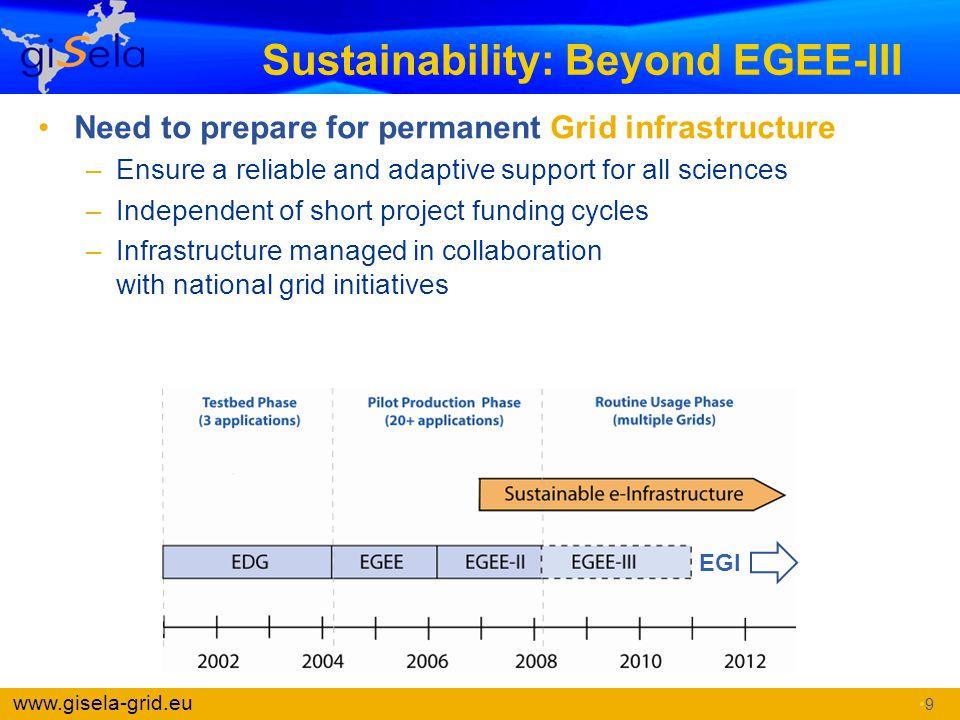 Sustainability: Beyond EGEE-III