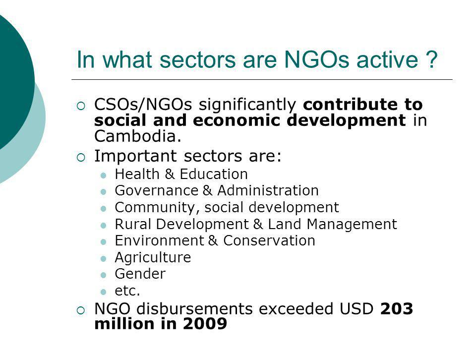 In what sectors are NGOs active