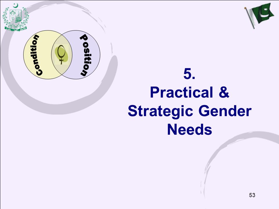 5. Practical & Strategic Gender Needs