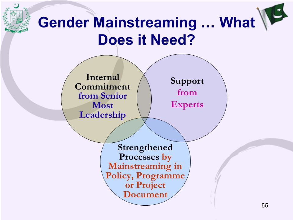 Gender Mainstreaming … What Does it Need