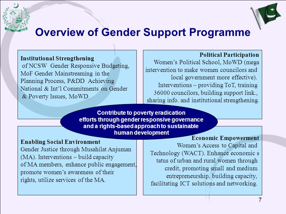 Overview of Gender Support Programme