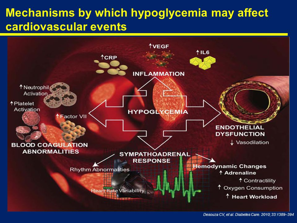 Mechanisms by which hypoglycemia may affect cardiovascular events