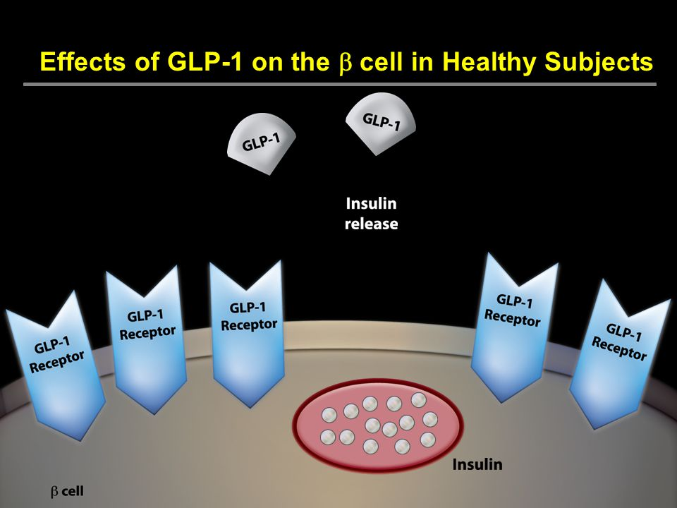 Effects of GLP-1 on the b cell in Healthy Subjects
