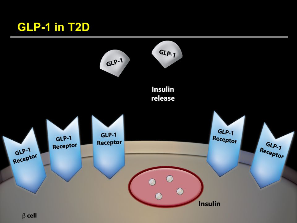 GLP-1 in T2D DISCUSSION. The magnitude of nutrient-stimulated insulin secretion is diminished in patients with type 2 diabetes.