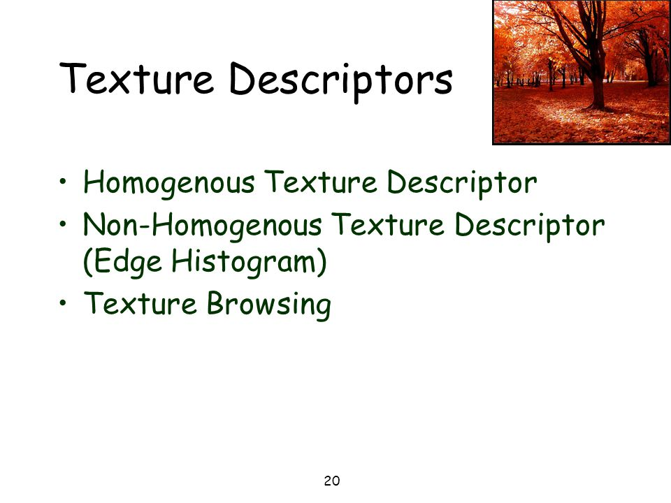 Texture Descriptors Homogenous Texture Descriptor