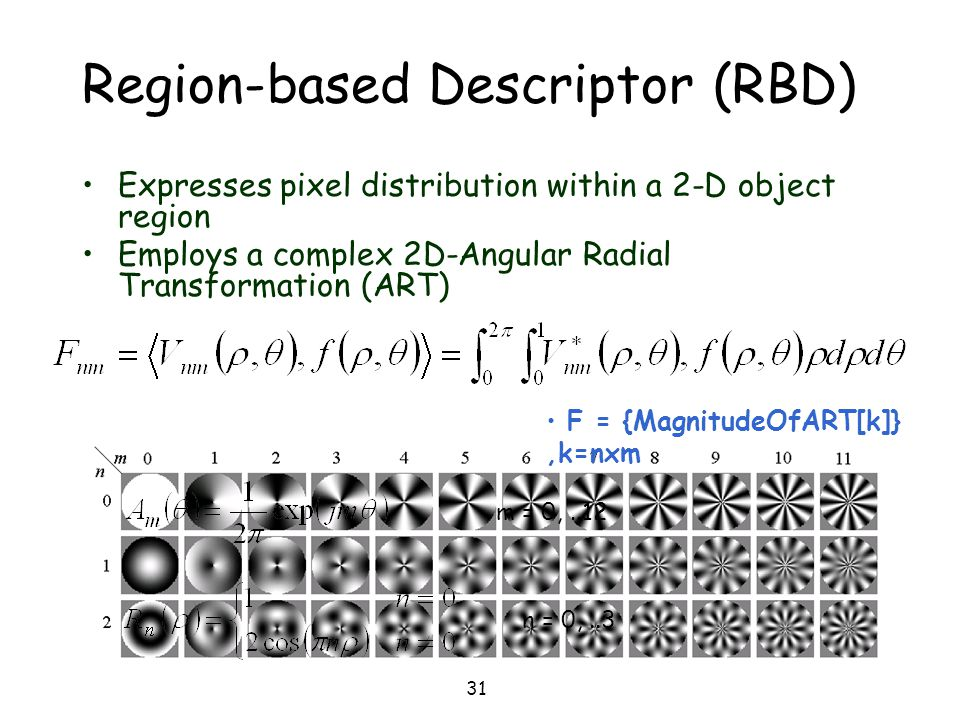 Region-based Descriptor (RBD)
