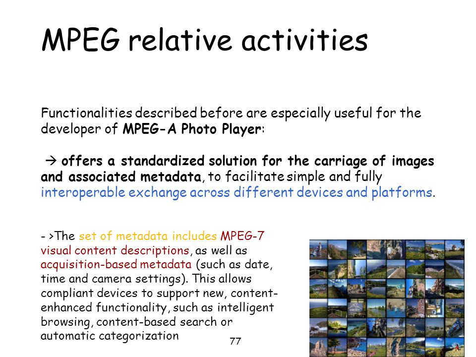 MPEG relative activities