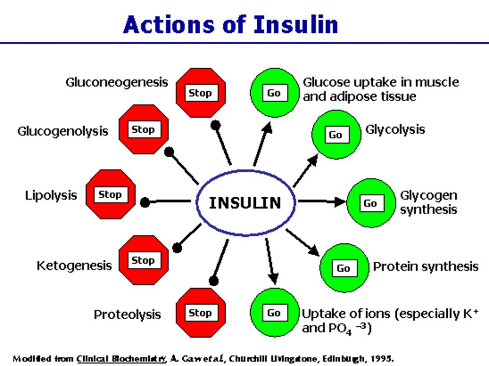 Begin with discussing nutritional ketosis; 1st review overall actions of insulin.