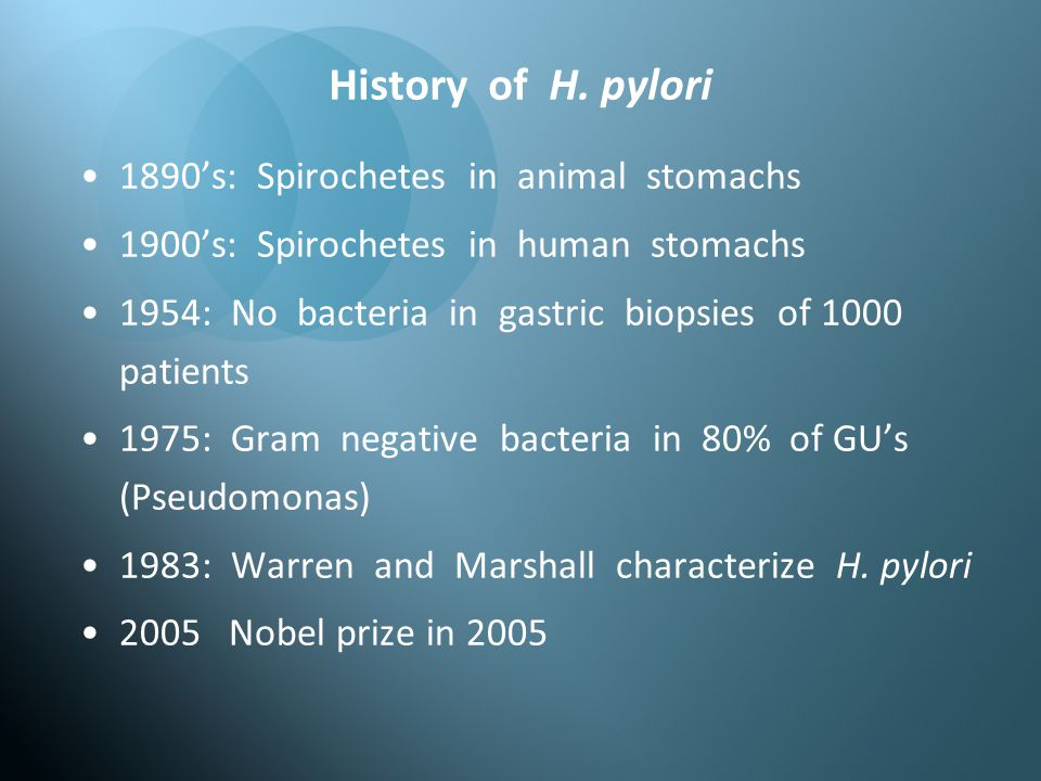 History of H. pylori 1890's: Spirochetes in animal stomachs