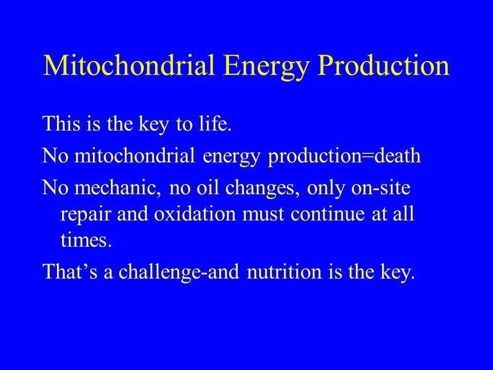 Mitochondrial Energy Production