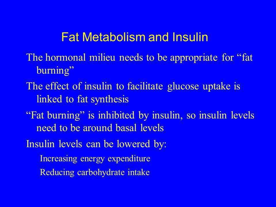 Fat Metabolism and Insulin