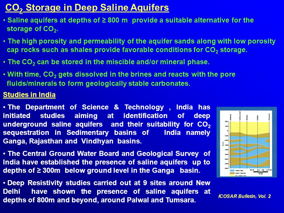 CO2 Storage in Deep Saline Aquifers