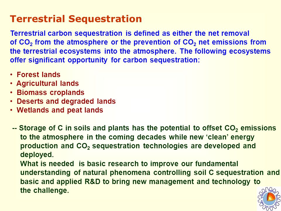 the importance of the issue of the emission of carbon dioxide and its effects Pollutants in the air aren't always visible and come from many  carbon dioxide,  a greenhouse gas, is the main pollutant that is warming earth  sulfur dioxide  and closely related chemicals are known primarily as a cause of acid rain  to  limit emissions of carbon dioxide and other greenhouse gases.