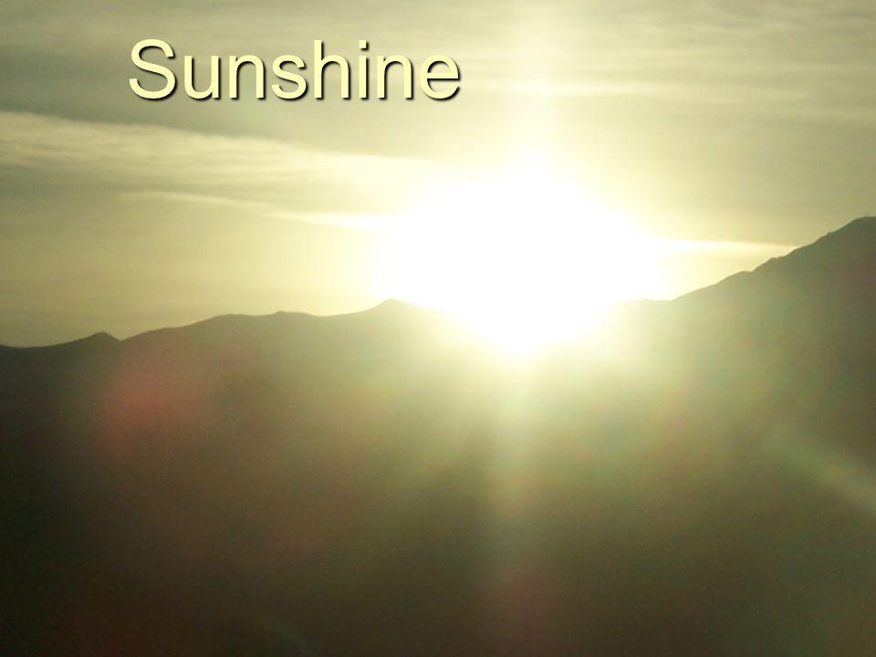 Sunshine Sunshine