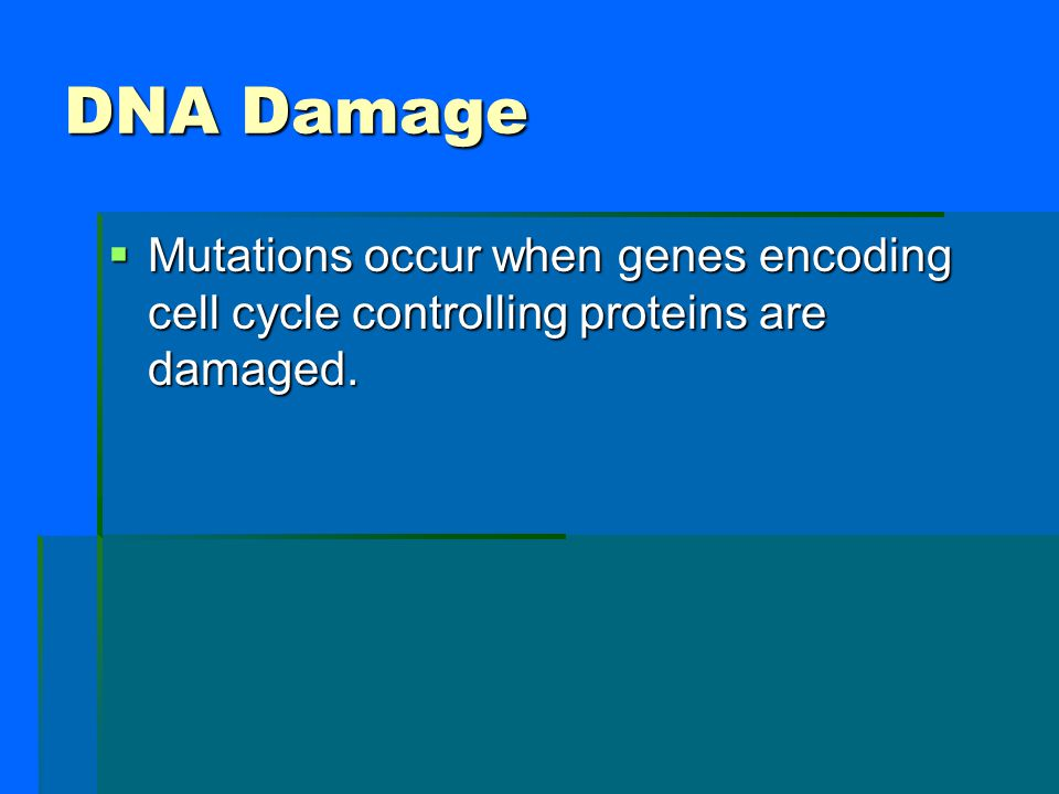 DNA Damage Mutations occur when genes encoding cell cycle controlling proteins are damaged.