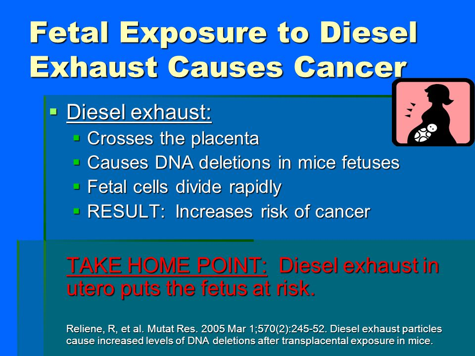 Fetal Exposure to Diesel Exhaust Causes Cancer