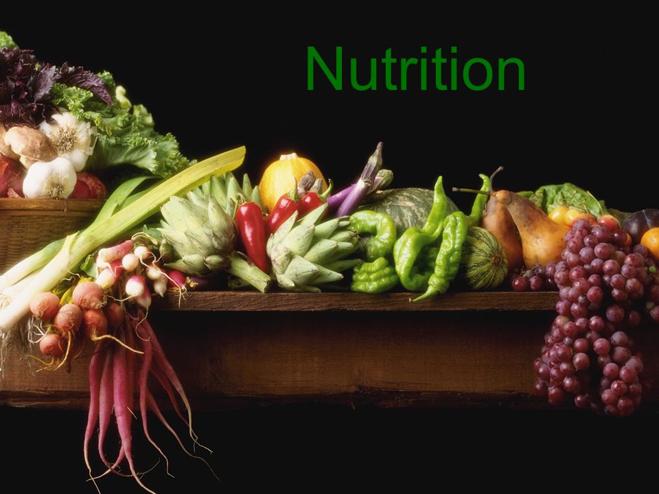 Nutrition Nutrition