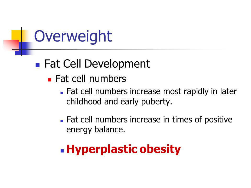 Overweight Fat Cell Development Hyperplastic obesity Fat cell numbers