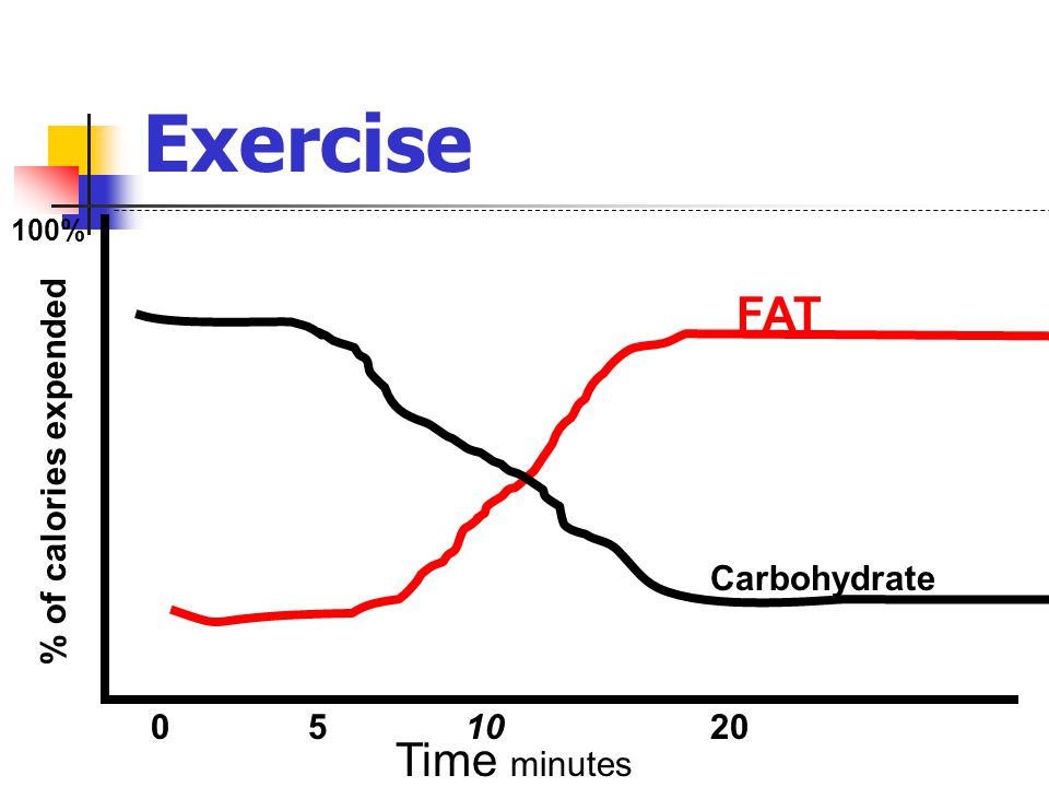 Exercise FAT Time minutes % of calories expended Carbohydrate 5 10 20