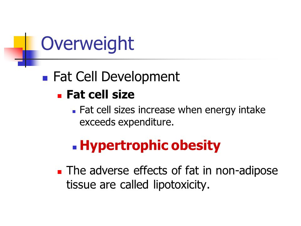 Overweight Fat Cell Development Hypertrophic obesity Fat cell size