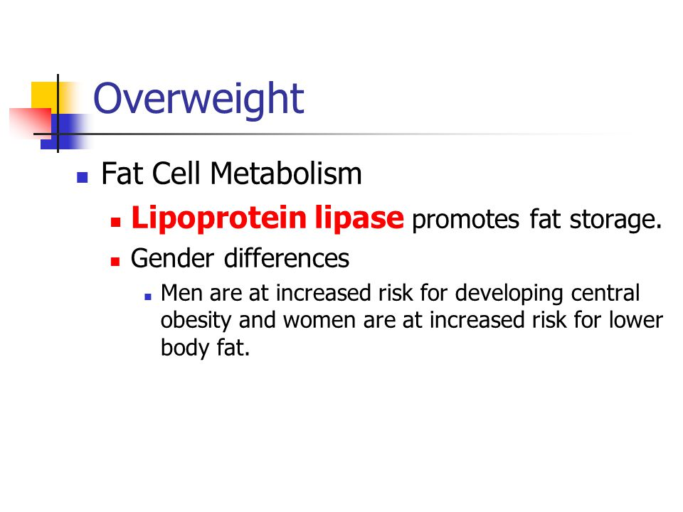 Overweight Fat Cell Metabolism