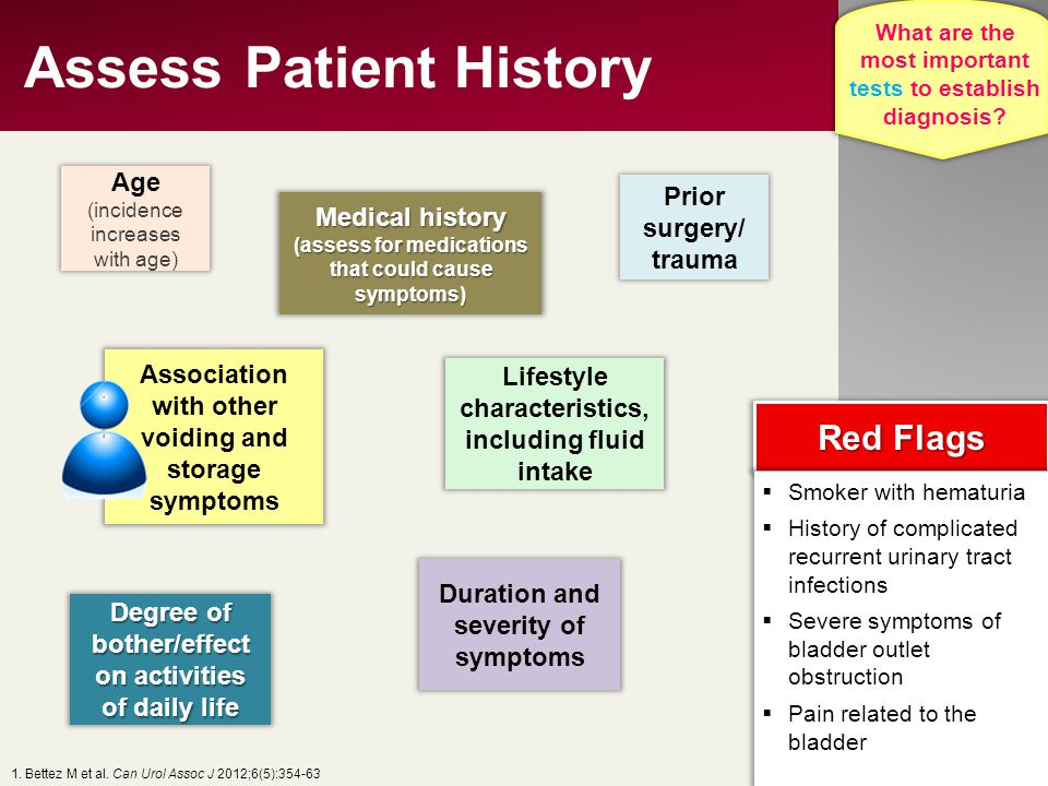 Assess Patient History