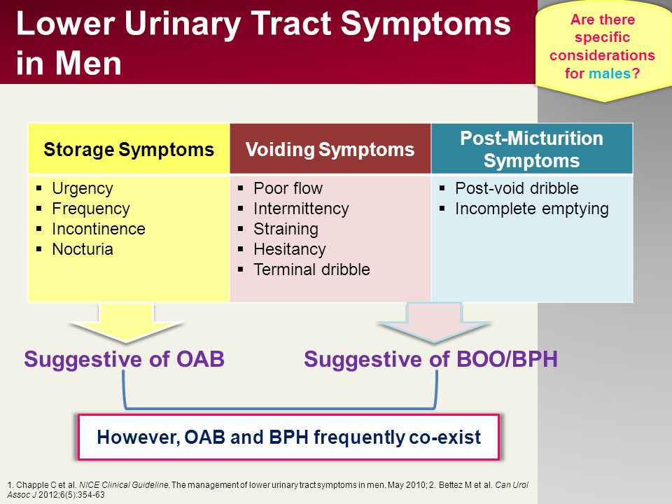 Lower Urinary Tract Symptoms in Men