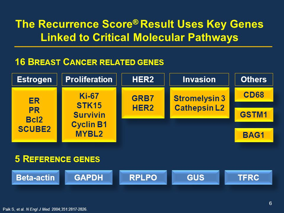 The Recurrence Score® Result Uses Key Genes Linked to Critical Molecular Pathways