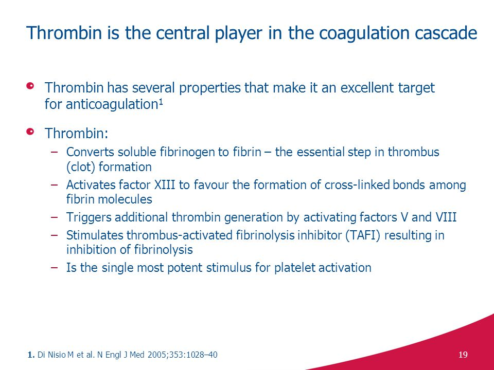 Thrombin is the central player in the coagulation cascade