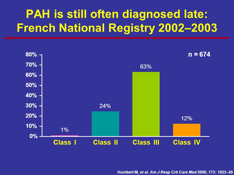PAH is still often diagnosed late: French National Registry 2002–2003